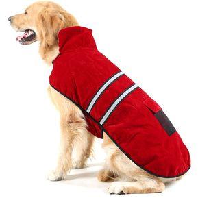 5fffa7d83b0 nuevo otoño y el invierno estilo Golden Retriever Labrador perro mascota  prenda de algodon con cinta