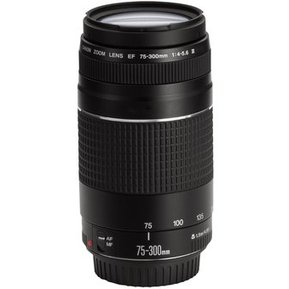 Lente Canon EF 75-300mm f 4 5.6 III-Negro c7c659d3962